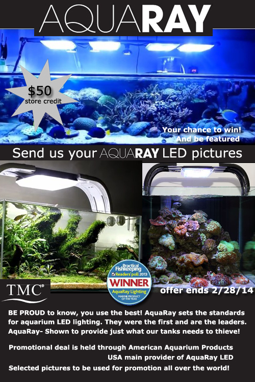 AquaRay aquarium LED